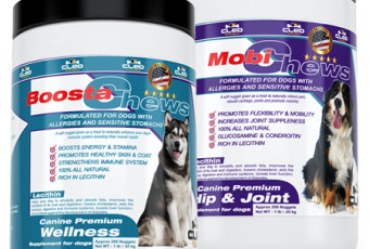 Best Premium Supplements for dogs