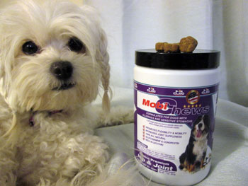 cleo mobichews for dogs