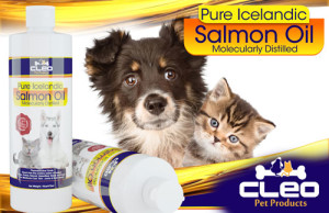 fish-oil-for-dogs-cats